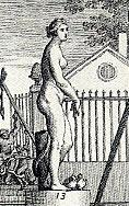 Venus Medicis