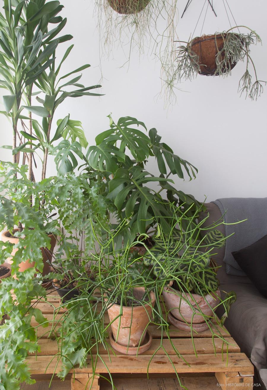 decoracao-apartamento-plantas-cozinha-08
