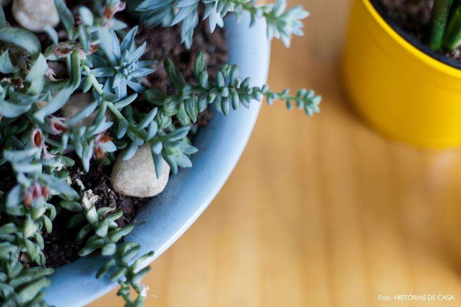 28-decoracao-cozinha-plantas-cachepos-suculentas-cactos