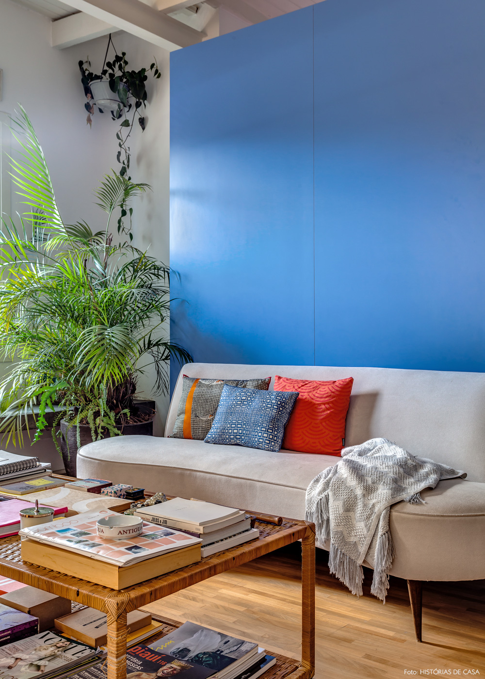 05-decoracao-sala-estar-sofa-vintage-feijao-cores