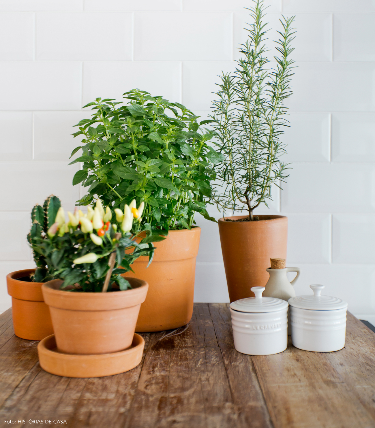 27-decoracao-cozinha-horta-caseira-no-apartamento-vaso-barro