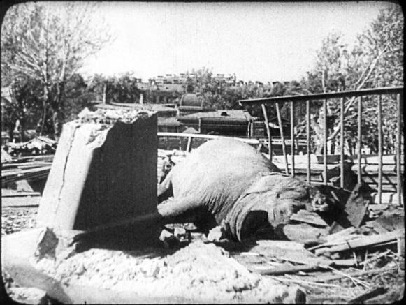 Betty. Muerta en un bombardeo. 1941