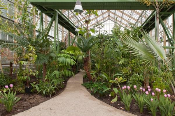 Hortus botanicus de Leiden, fundado por Carolus Clusius