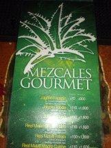 Carta de mezcales gourmet Bar Bizarro en Condesa, Mexico DF