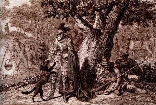 Perot Rocaguinarda. Gravat del s. XVIII