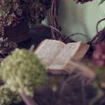 Los protocolos de los sabios de Sion; Un enigma histórico