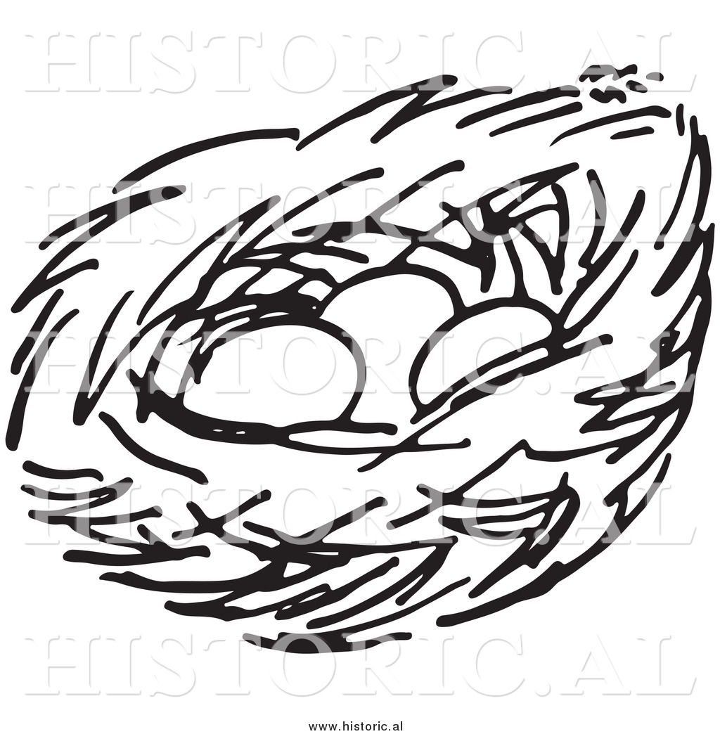 Clipart Of A Bird Nest With Three Eggs