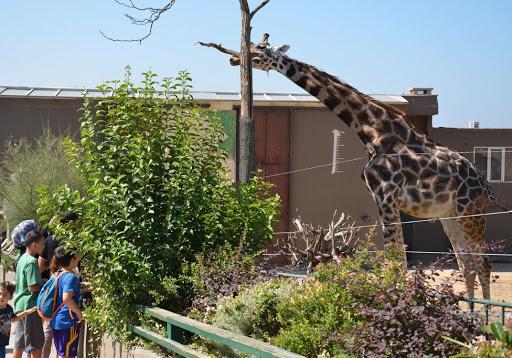 Entertainment Tour: Bogazici Zoo and Botanic Park