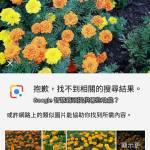 Google PixeL 與Oreo系統帶給我們哪些下一代技術?(中)