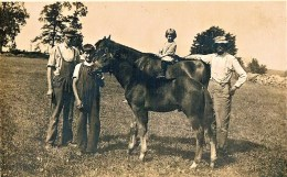 Three generations of the Marsh family in 1910. Ambrose Marsh at the left was a 2 time State Representative, grandson Laurence, atop the horse, would become the President of the Marsh Dairy, and Ambrose's sons George and Ralph would one day become officers of the Volunteer Fire Department, with George serving as President from 1945-1950.