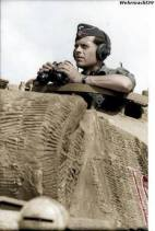 Tank commander and his Panzer V Panther in Italy