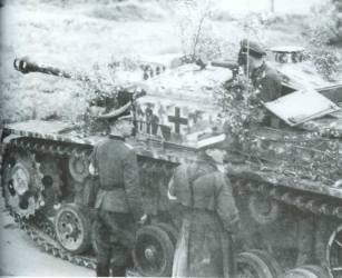 StuG III with camoflage.