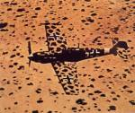 Bf109 in the best desert camo.