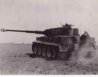 Tiger 331 Northern France 1944.