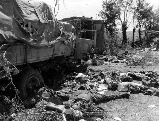 Remains of a German convoy destroyed near Falaise.