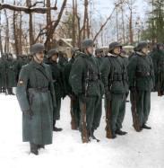 250th Blue Division
