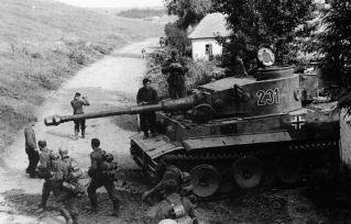 Tiger 1 - 231