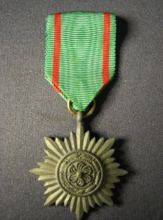 Ostvolk Medal in Gold.