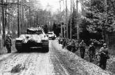 Panthers in Lower Silesia March, 1945.