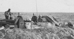 Sturmpanzer II Bison of the Afrika Korps.