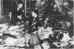 A 1938 terrorist action of Sudetendeutsches Freikorps.