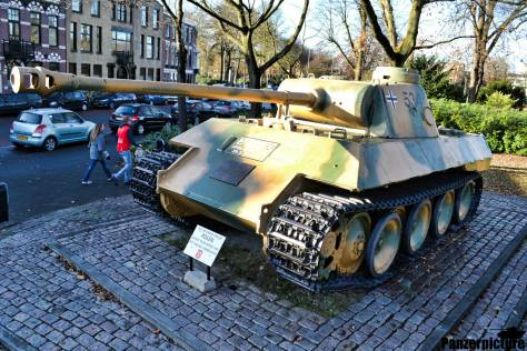 Polish Panther from Breda