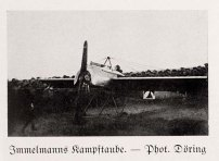 Immelmann's Battle Dove.