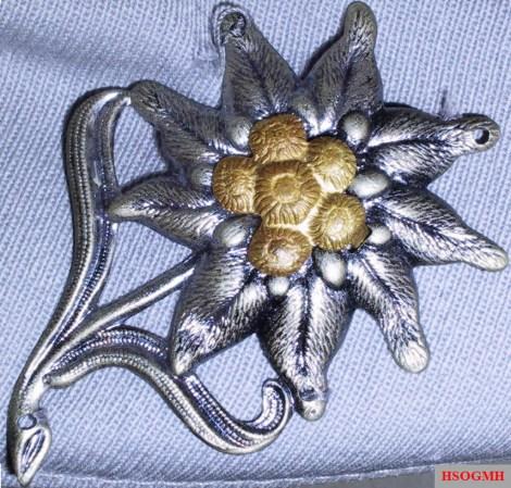 Cap badge of the Gebirgsjäger.