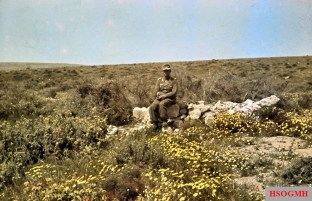 "Generalmajor Alfred Gause (Chef des Generalstabes Panzergruppe ""Afrika"") posed in the flowery grass of North Africa and sporting his Ritterkreuz des Eisernen Kreuzes which he received in 13 December 1941. Photo taken by his commander, General der Panzertruppe Erwin Rommel (Kommandierender General Panzergruppe ""Afrika"") during his Campaign in North Africa, winter 1941/1942."