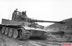 A German Tiger tank on the move, in Tunisia January 1943.