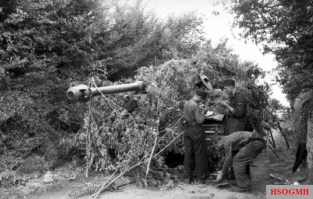 Camouflaged Tiger tank.