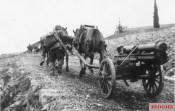 The SS-Freiwilligen-Karstwehr Battalion conducting artillery training.