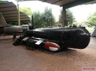Molch M391.