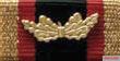 Ribbon bar of the medal.