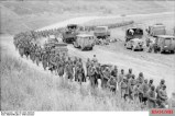 Captured Soviet prisoners are being moved from the battlefield.