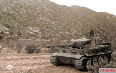 Tiger I of the Schwere Panzerabteilung 504 during the battle of the Kasserine pass.
