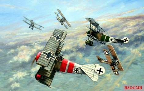 Fokker Dr.I in a dogfight by Robert Ritter von Greim.