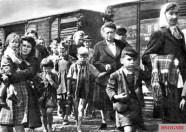 Sudeten Germans expelled after World War II.
