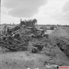 Wrecked German transport and knocked out panzers on a road in the Falaise-Argentan area, 21 August 1944. B 9583 Part of WAR OFFICE SECOND WORLD WAR OFFICIAL COLLECTION No 5 Army Film & Photographic Unit Mapham J (Sgt)