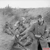 German prisoners captured by 53rd (Welsh) Division in Holland, 17 November 1944.