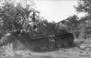 Panther in France.
