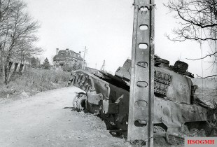 Knocked out Tiger 334.