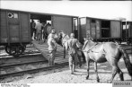 German soldiers load horses onto boxcar, southern Russia.