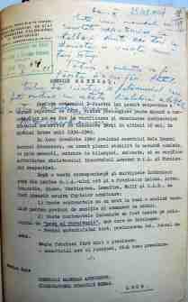 Raport-Ion-Antonescu-1
