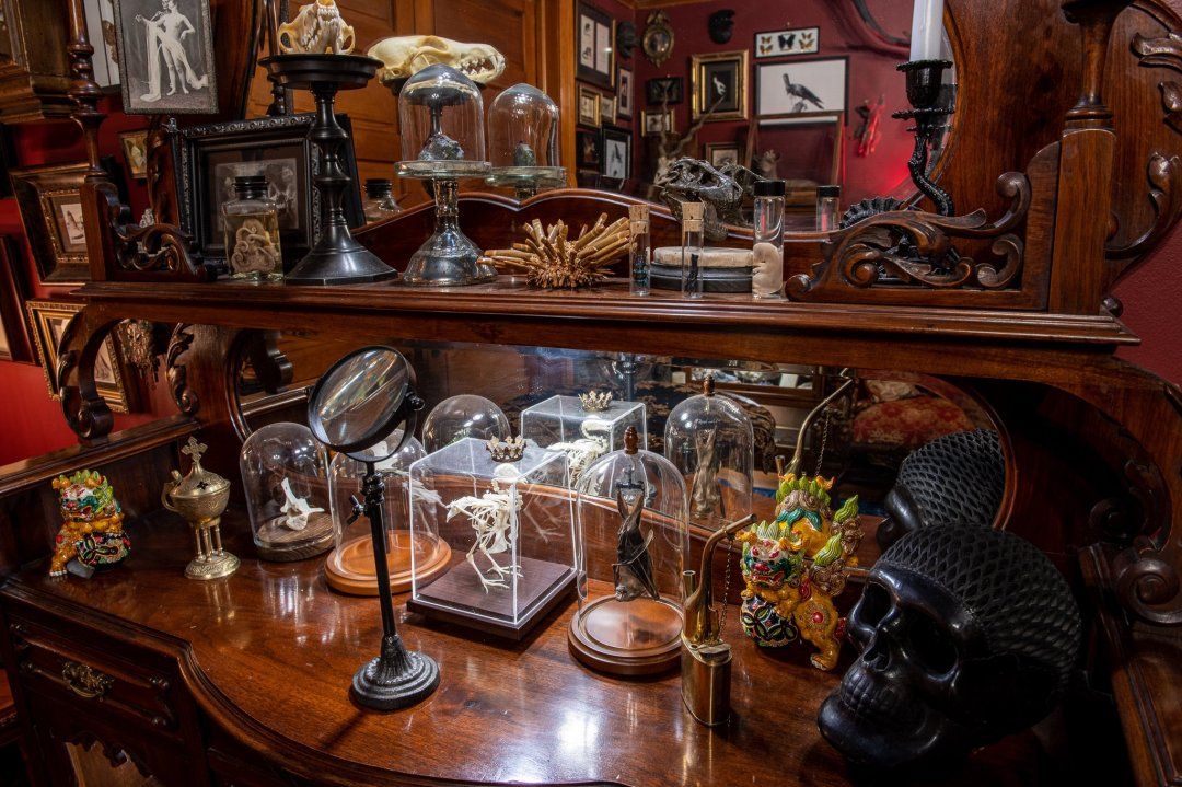 taxidermy, specimens, and a collection of specimens fills the house.