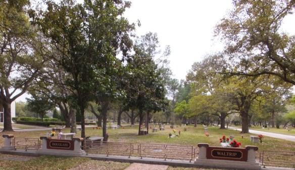 Memorial Oaks