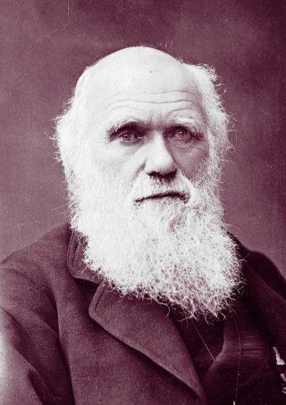 Charles Darwin, bedenker van de evolutietheorie