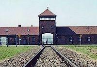 Brief gevangenen Auschwitz gevonden in fles