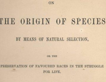 'On the Origin of Species' van Charles Darwin
