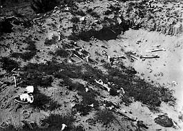 Foto van een geplunderd masssagraf nabij Treblinka, 1945